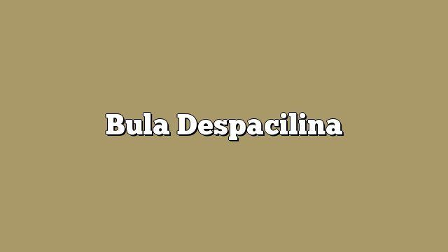 Bula Despacilina