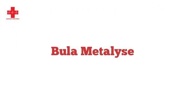 Bula Metalyse